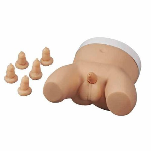 Infant circumcision trainer